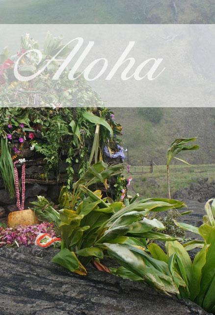 Reiseberichte - Seminarreisen auf Hawaii