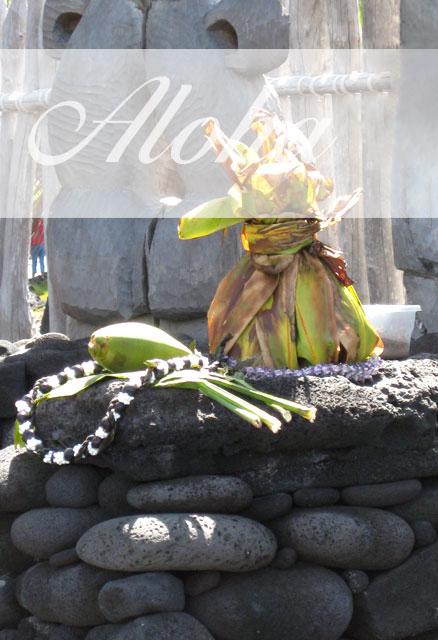Danksagung - Seminarreisen auf Hawaii